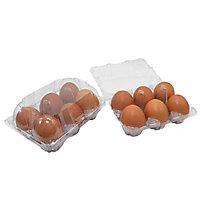 Boîte de 6 œufs transparente